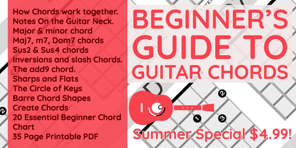 The beginners Guide to guitar chords book
